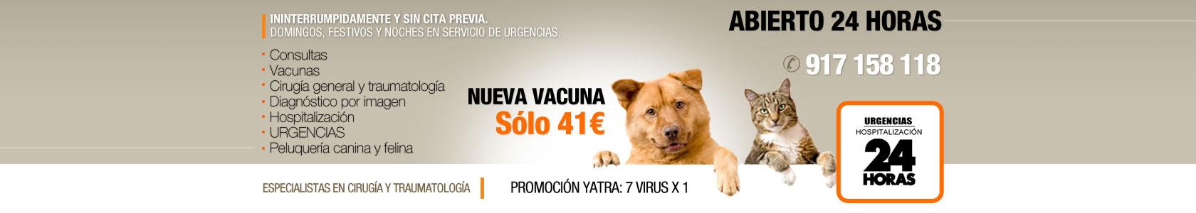 cabecera_yatra5